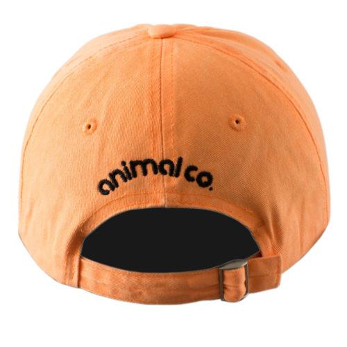 Gorra Animal Co Camper Elefante Naranja