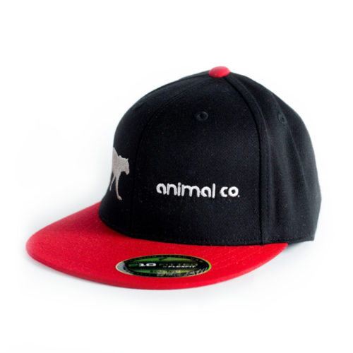 Gorra Animal Co Flex Fit Pantera 5